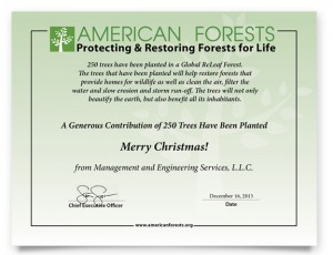 American-Forest-Certificate-Christmas-2013-02
